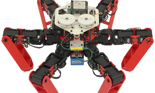A robot that can navigate as well as tiny desert ant